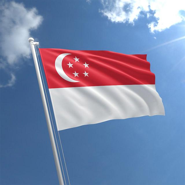 Cờ Cộng hòa Singapore